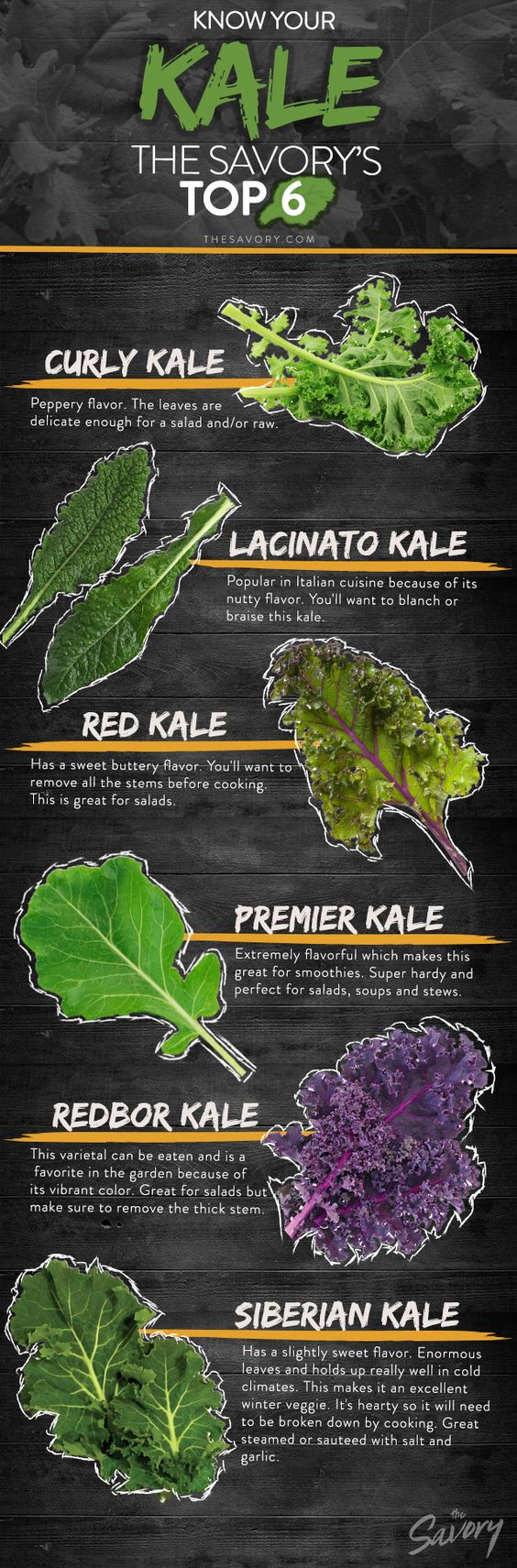 Image 1 1 - All You Need To Know About Kale Chips