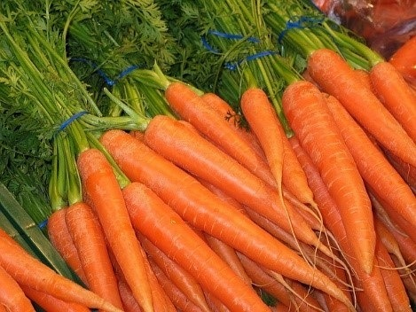 Fresh Carrot Produce