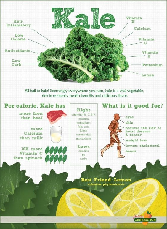 Image 2 3 - All You Need To Know About Kale Chips