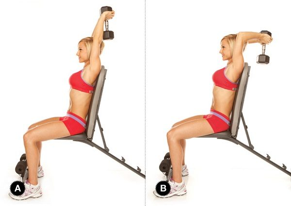 10 Of The Most Effective Tricep And Bicep Workouts With ...