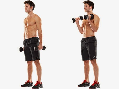 10 Of The Most Effective Tricep And Bicep Workouts With Dumbbells