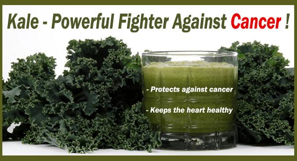Image 4 2 - 6 Nutritional Benefits Of Drinking Kale Juice