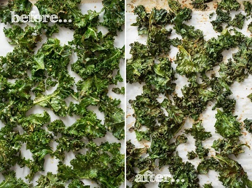 Image 5 1 2 - All You Need To Know About Kale Chips