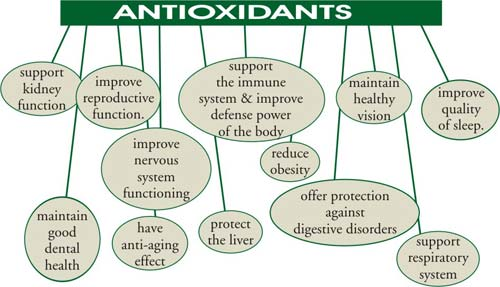 Image 6 6 - 6 Nutritional Benefits Of Drinking Kale Juice