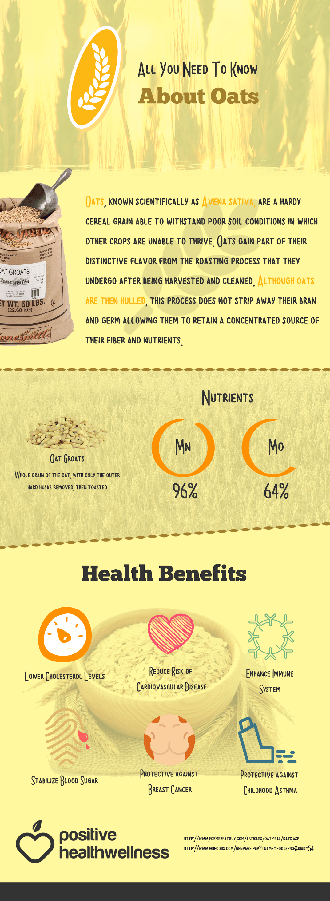 Everything You Need To Know About Oats