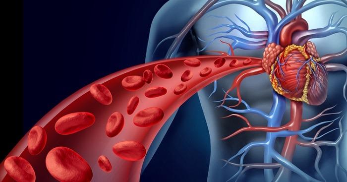 Improved blood circulation
