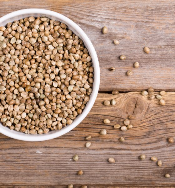 The 8 Nutritional Benefits Of Hemp Seeds