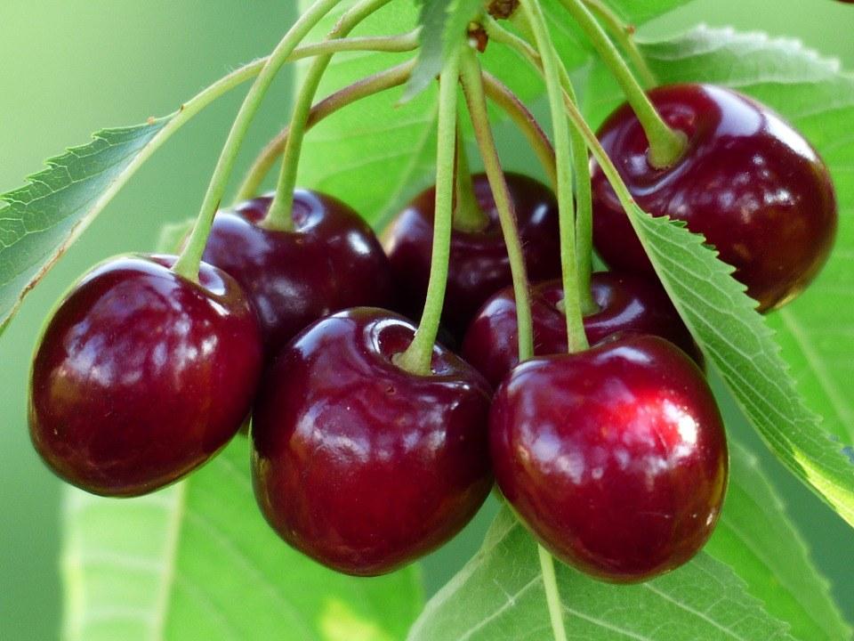 cherry 167341 960 720 - 12 Best Foods To Help You Sleep Like A Baby
