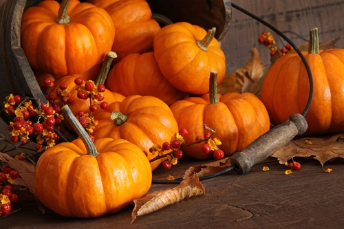 Image 1 13 - Pumpkin Health Benefits (And Ways to Prepare It)
