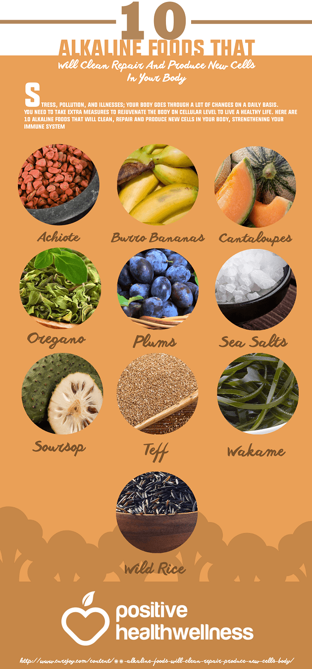 10 Alkaline Foods that Will Clean, Repair and Produce New Cells in Your Body