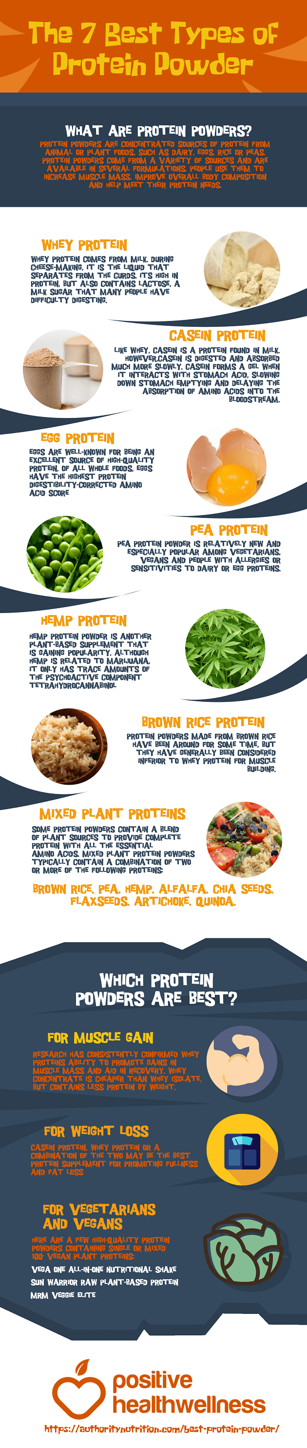 The 7 Best Types Of Protein Powder – Infographic