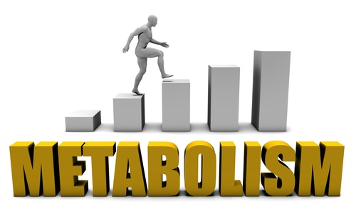 Image 1 1 - Foods to Avoid to Keep Your Metabolism