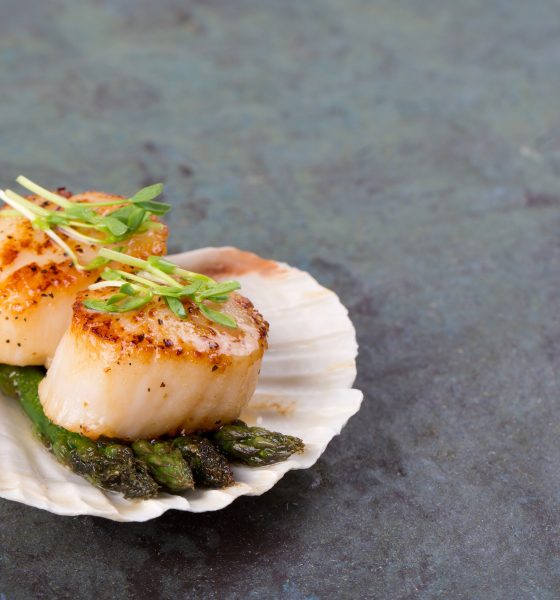 6 Scallops Recipes to Try At Home
