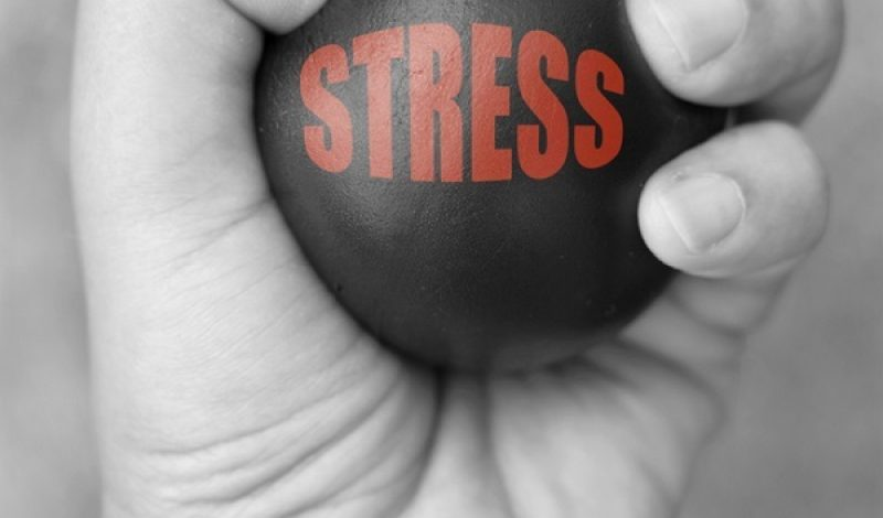 Stress: How it Affects the Body – Infographic