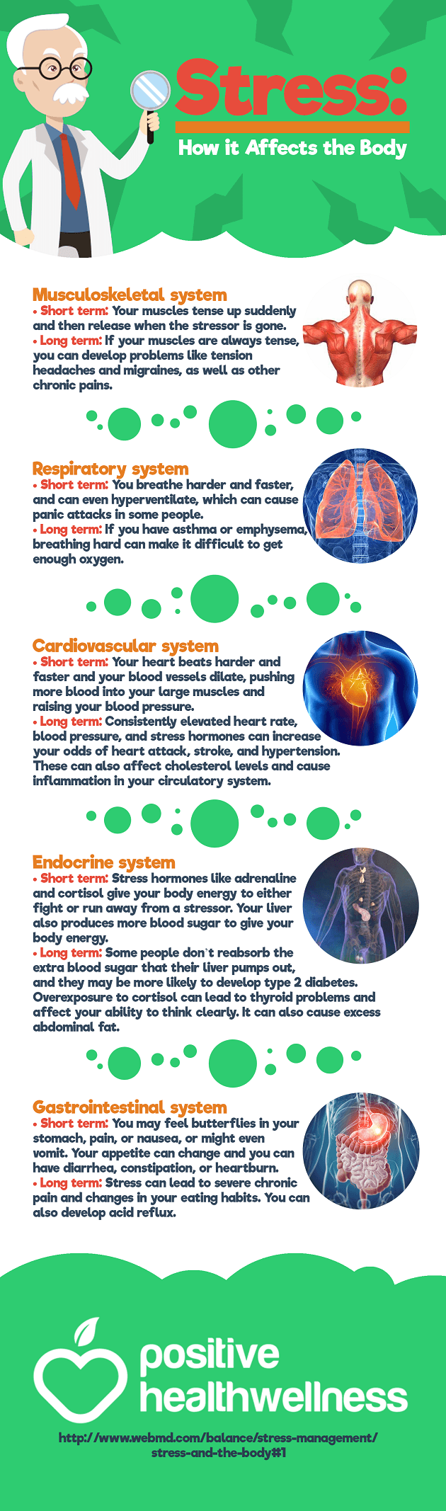 Stress: How it Affects the Body