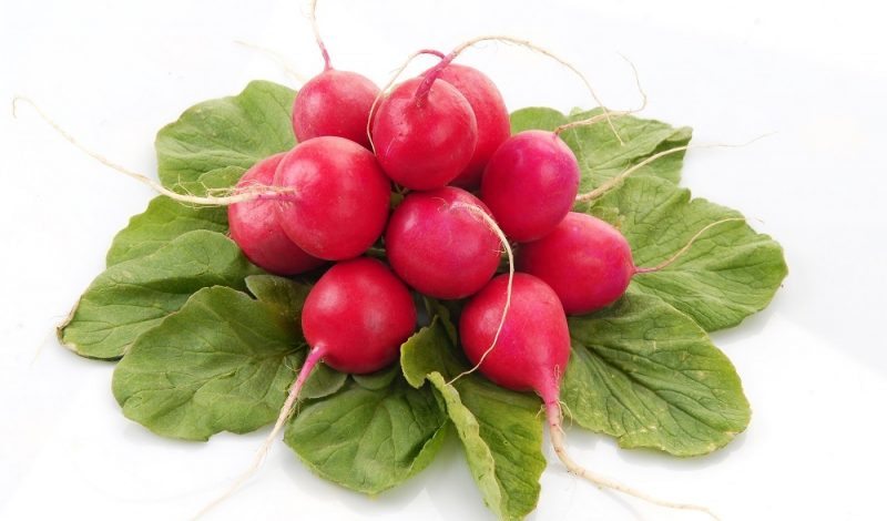 11 Tasty Radish Recipes You Should Try Today