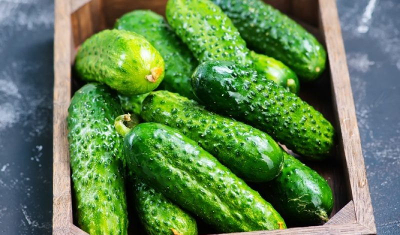 10 Little Known Health Benefits of Cucumbers – Infographic
