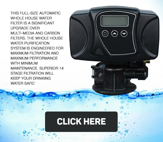 Eagle 2000A Automatic Home Water Filter