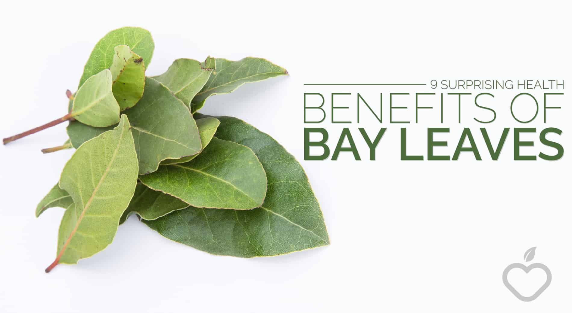 Bay Leaves Image Design 1 - 9 Surprising Health Benefits Of Bay Leaves