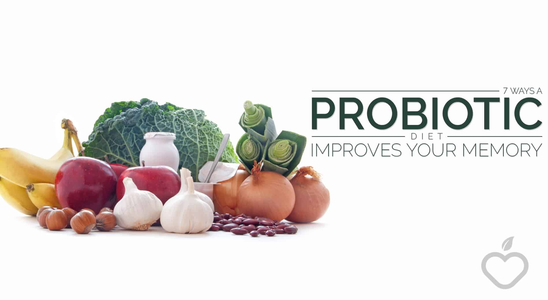 Probiotic Diet Image Design 1 - 7 Ways A Probiotic Diet Improves Your Memory