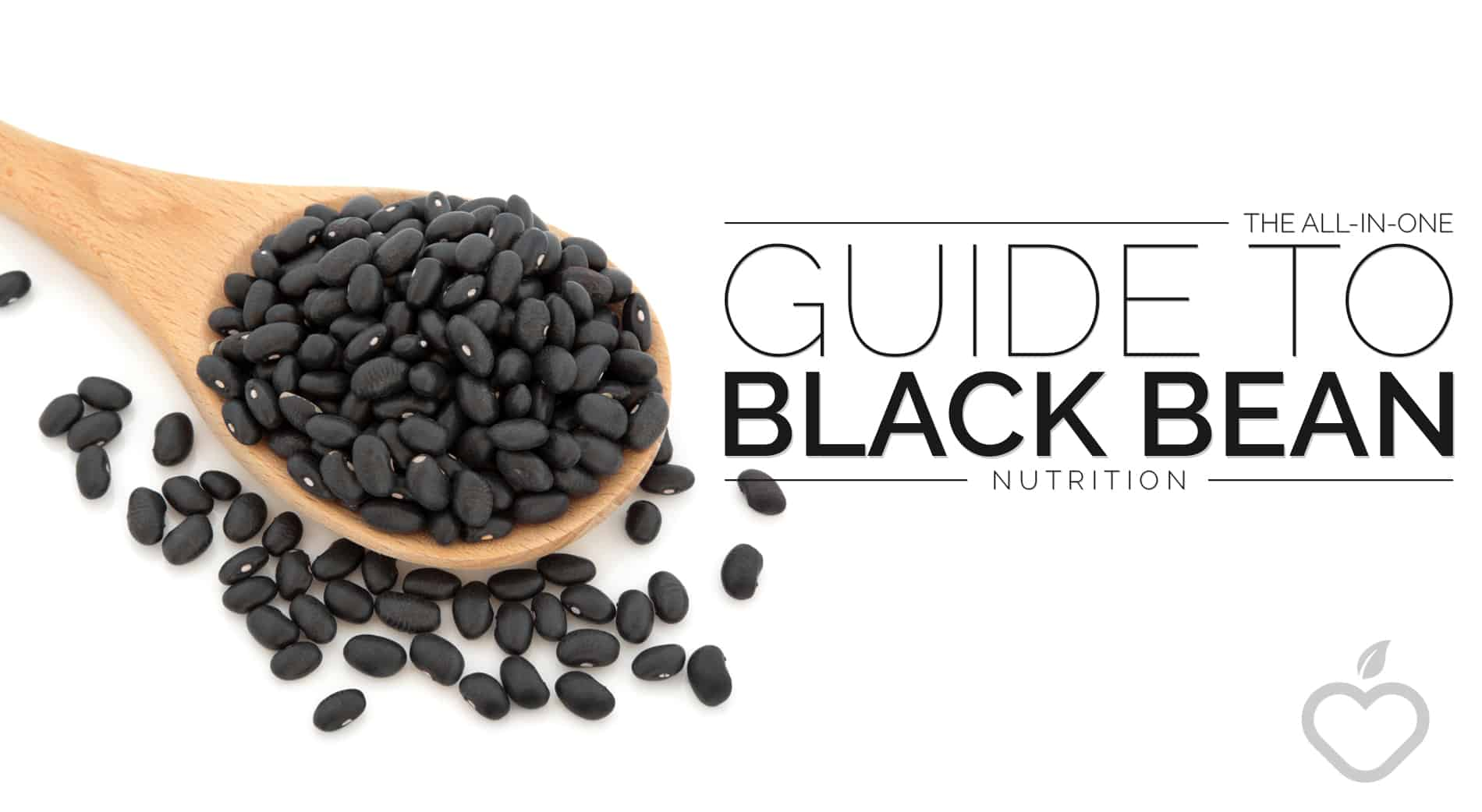 Black Bean Nutrition Image Design 1 - All-in-One Guide to Black Bean Nutrition