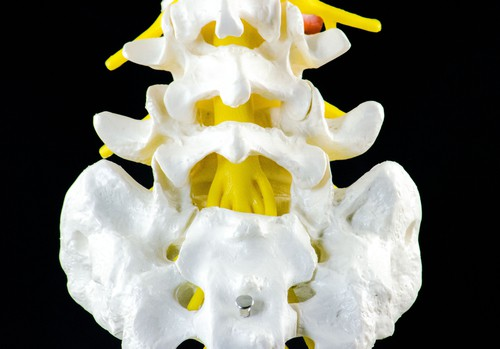 Increasing Hamstring and Hip Flexibility - The Full Information to Sciatic Nerve Ache