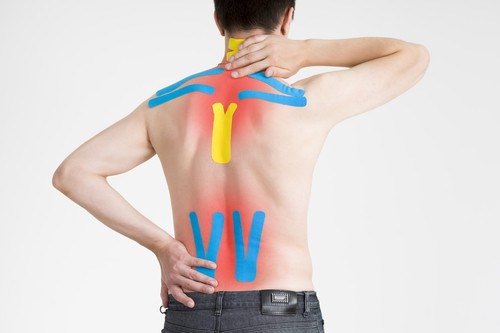 Improving Core and Back Strength  - The Full Information to Sciatic Nerve Ache